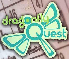 dragonfly quest