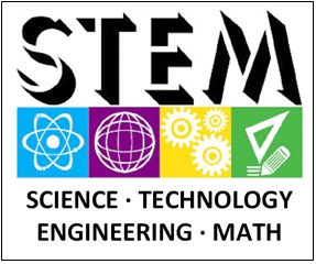stem1